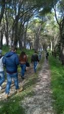 LM_forestadeidiritti_09