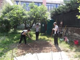 Preparazione terreno