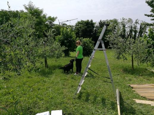 Bricolage del Cuore _ Udine