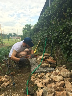Bricolage del Cuore Verona